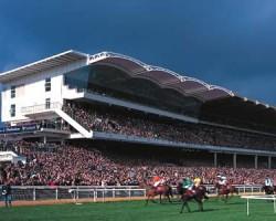 Cheltenham Racecourse, 10.5mtr Opal barrel vault Main Grandstand, (UK)